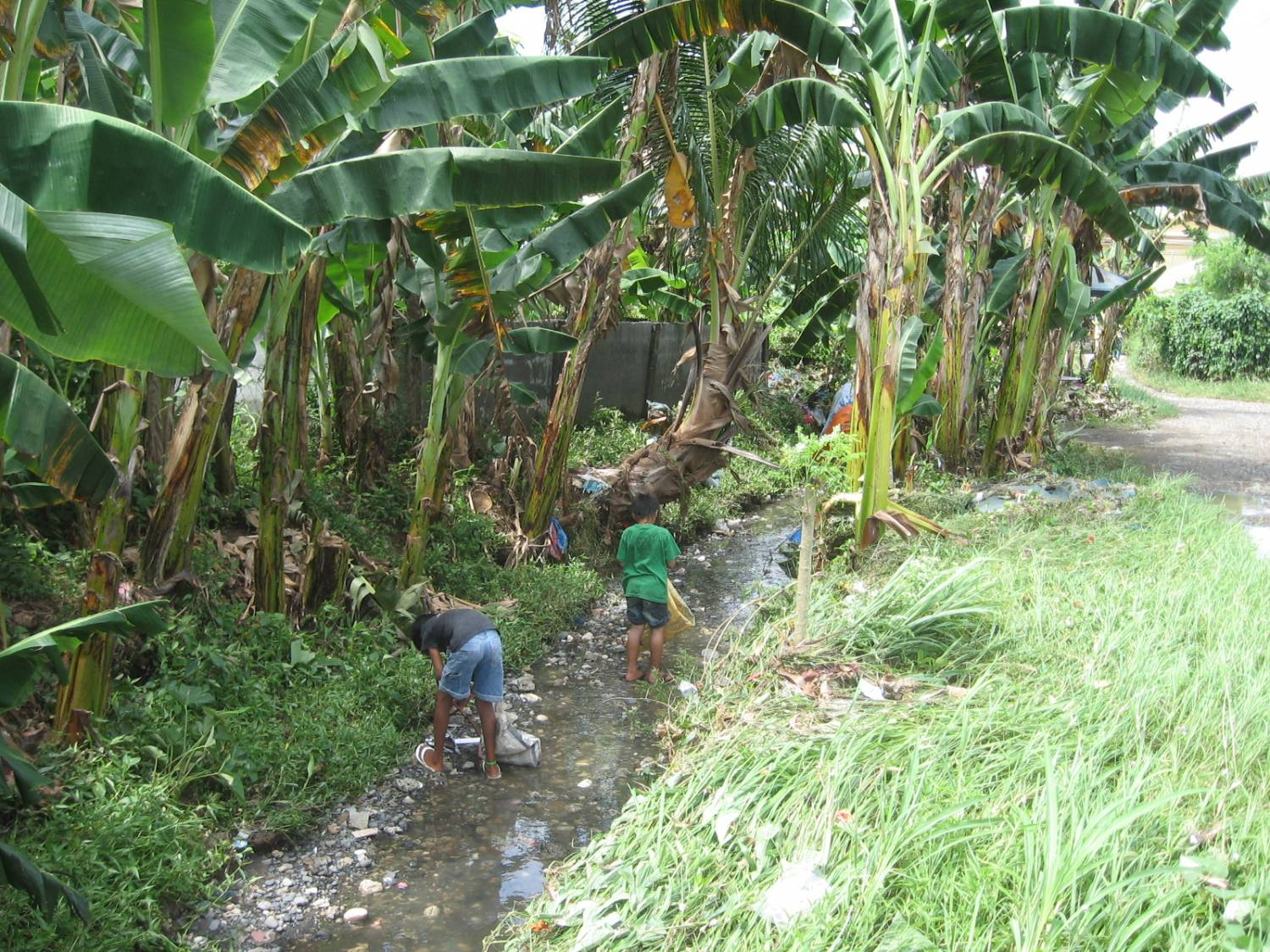 problem of the barangay Improper throwing of garbages in barangay sawang calero causes health deficiency a micro study on a social problem.